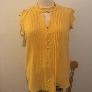 Beautiful ModCloth blouse